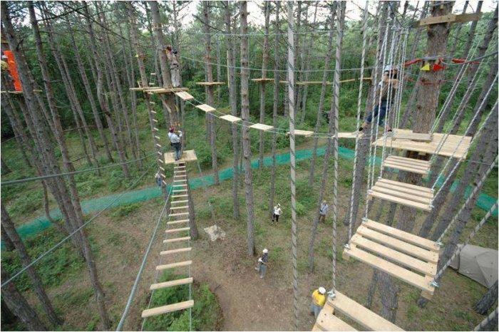 Открытие веревочного парка - тонкости и особенности бизнеса