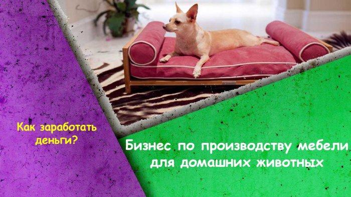 Бизнес по производству мебели для домашних животных