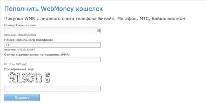 Подтвердить операцию перевода через введение СМС кода,