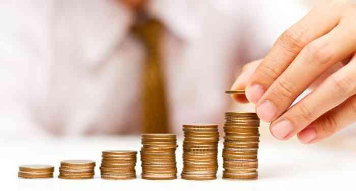 Достоинства и недостатки инвестирования в МФО