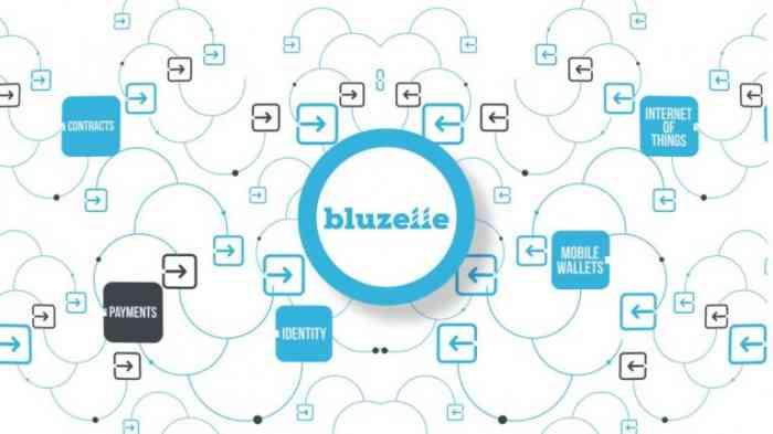 Криптовалюта Bluzelle
