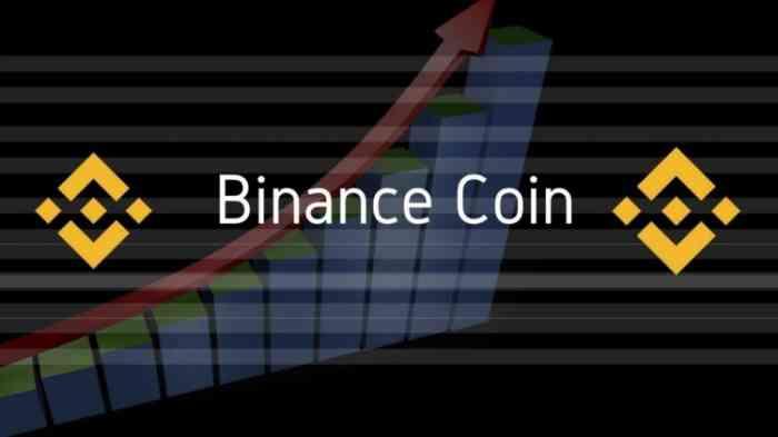 Криптовалюта Binance Coin